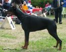 Graziela Betelges on first show in Estonia in youth class was V3 under 9 females
