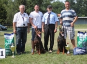 Club show and golden doberman Slovakia 2012