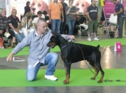 World dog show Paris,France